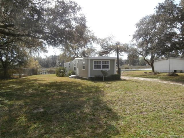 6043 N Mallard Drive, Hernando, FL 34442 (MLS #780997) :: Plantation Realty Inc.