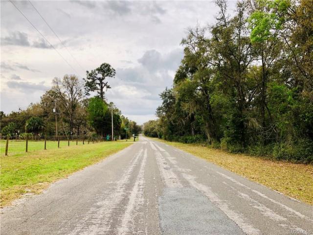 7512 North Ira Martin Avenue, Crystal River, FL 34428 (MLS #781035) :: Pristine Properties