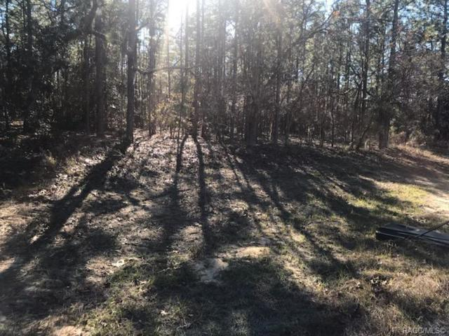 1514 W Noon Place, Citrus Springs, FL 34434 (MLS #781056) :: Plantation Realty Inc.