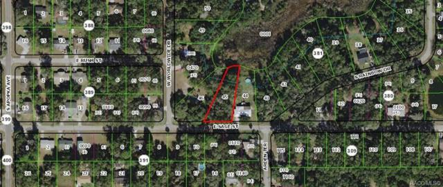 5956 E Aloha Street, Inverness, FL 34452 (MLS #781079) :: Plantation Realty Inc.