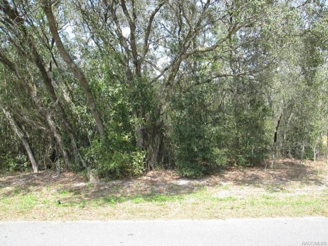 2787 E Marcia Street, Inverness, FL 34453 (MLS #781096) :: Plantation Realty Inc.