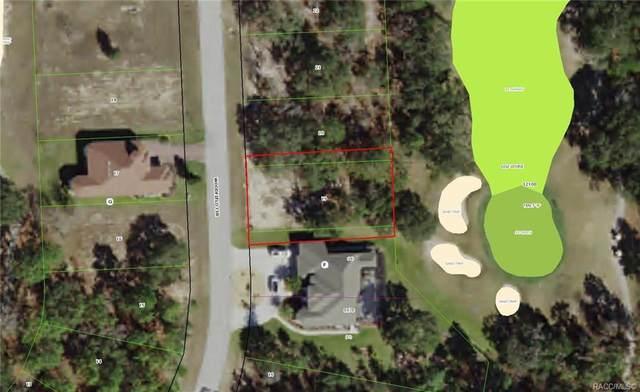 39 Woodfield Circle, Homosassa, FL 34446 (MLS #781138) :: Plantation Realty Inc.