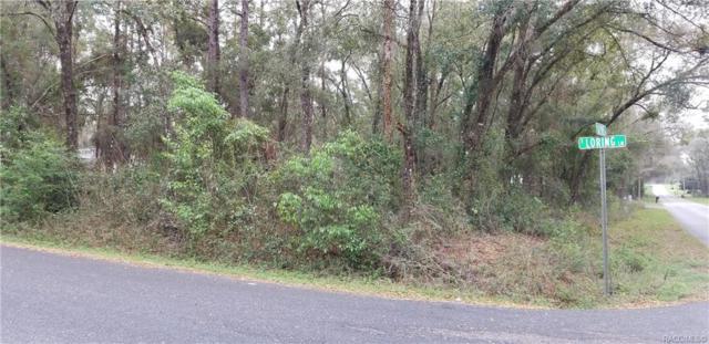 5942 E Loring Lane, Inverness, FL 34450 (MLS #781167) :: Plantation Realty Inc.