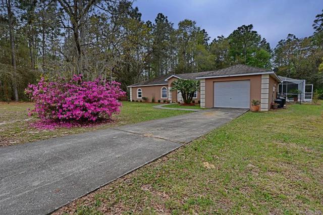 12168 S Iris Point, Floral City, FL 34436 (MLS #781211) :: Plantation Realty Inc.