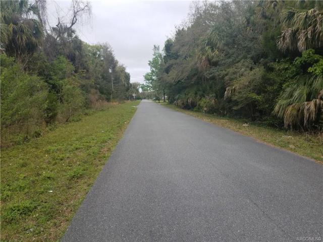 415 N Country Club Drive, Crystal River, FL 34429 (MLS #781218) :: Plantation Realty Inc.