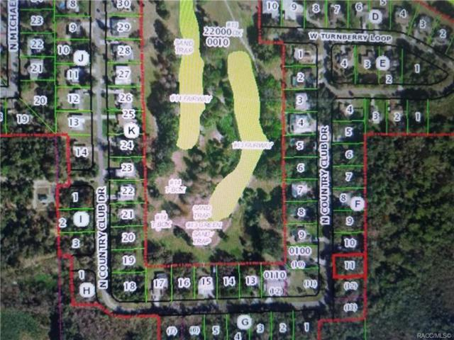 175 N Country Club Drive, Crystal River, FL 34429 (MLS #781220) :: Plantation Realty Inc.