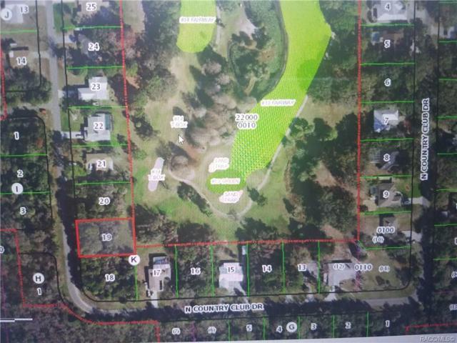 94 N Country Club Drive, Crystal River, FL 34429 (MLS #781225) :: Plantation Realty Inc.