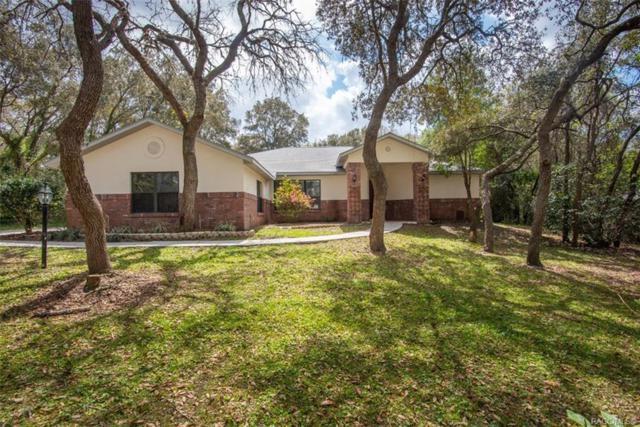 74 W Chase Street, Hernando, FL 34442 (MLS #781248) :: Plantation Realty Inc.