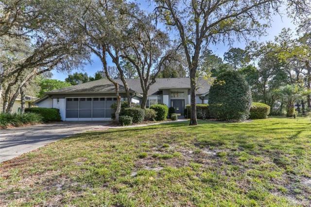 4 Salvia Court W, Homosassa, FL 34446 (MLS #781303) :: Plantation Realty Inc.