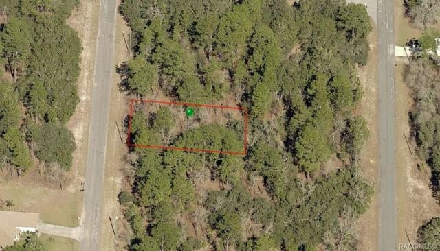 7169 N Regent Terrace, Citrus Springs, FL 34433 (MLS #781319) :: Plantation Realty Inc.