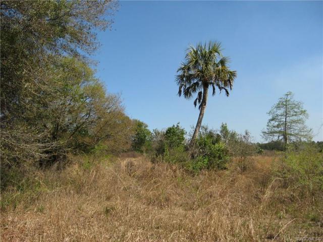 5955 E Crystal Brook Court, Hernando, FL 34442 (MLS #781323) :: Pristine Properties