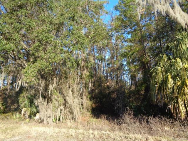 11807 E Gulf To Lake Highway, Inverness, FL 34450 (MLS #781332) :: Plantation Realty Inc.