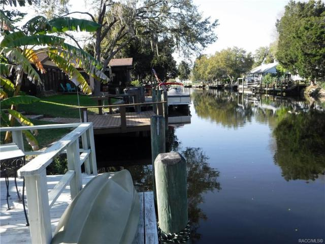 11625 W Riverhaven Drive, Homosassa, FL 34448 (MLS #781342) :: Plantation Realty Inc.