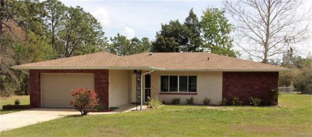 9851 N Elkcam Boulevard, Citrus Springs, FL 34433 (MLS #781352) :: Plantation Realty Inc.