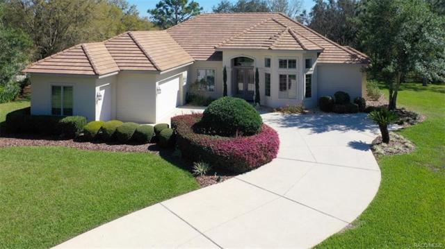 2659 N Carnoustie Loop, Lecanto, FL 34461 (MLS #781353) :: Pristine Properties