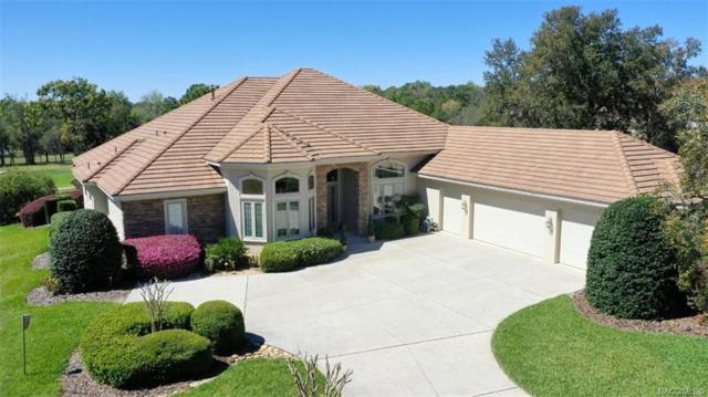2772 N Crosswater Path, Lecanto, FL 34461 (MLS #781355) :: Pristine Properties