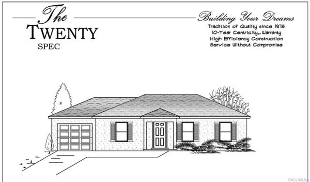 284 S Savary Avenue, Inverness, FL 34453 (MLS #781365) :: Plantation Realty Inc.