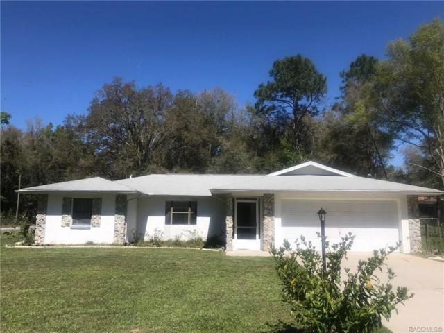 1885 W Water Lily Drive, Citrus Springs, FL 34434 (MLS #781370) :: Plantation Realty Inc.