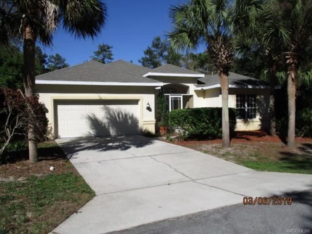 20 Euphorbia Court, Homosassa, FL 34446 (MLS #781408) :: Plantation Realty Inc.