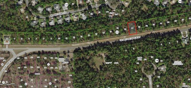 6461 W Oak Park Boulevard, Homosassa, FL 34446 (MLS #781414) :: Plantation Realty Inc.