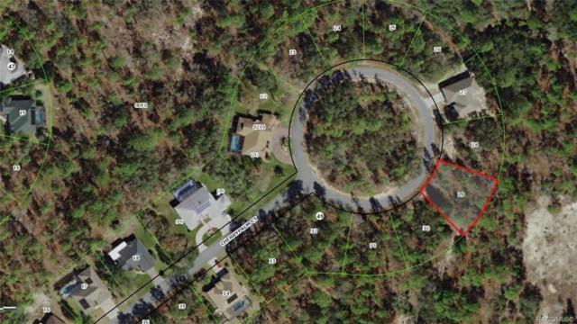 31 Cherrypalm Court, Homosassa, FL 34446 (MLS #781423) :: Plantation Realty Inc.