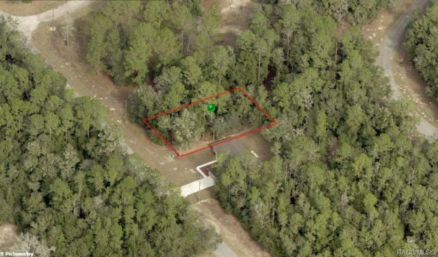 8987 N Spikes Way, Citrus Springs, FL 34434 (MLS #781447) :: Plantation Realty Inc.
