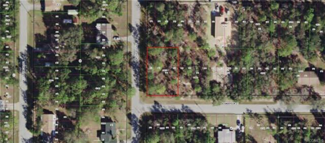 3011 E Anderson Street, Inverness, FL 34453 (MLS #781452) :: Plantation Realty Inc.