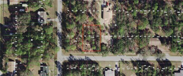 3029 E Anderson Street, Inverness, FL 34453 (MLS #781465) :: Plantation Realty Inc.