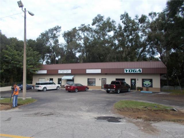 7731 S Old Floral City Road, Floral City, FL 34436 (MLS #781499) :: Plantation Realty Inc.