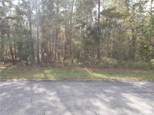 4 Impatiens Court, Homosassa, FL 34446 (MLS #781520) :: Plantation Realty Inc.