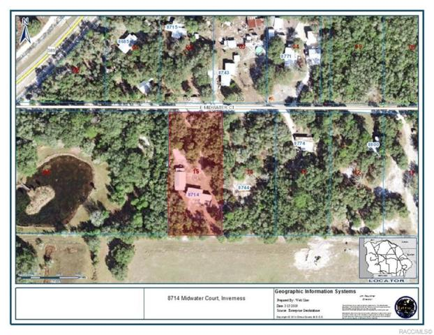 8714 Midwater Court, Inverness, FL 34453 (MLS #781527) :: Plantation Realty Inc.