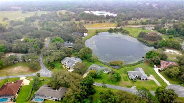 9775 E Baymeadows Drive, Inverness, FL 34450 (MLS #781553) :: Plantation Realty Inc.