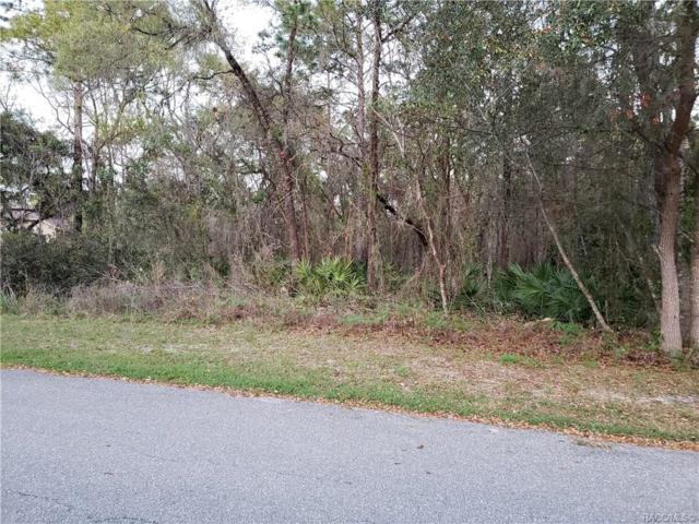 11 Crossandra Court E, Homosassa, FL 34446 (MLS #781554) :: Plantation Realty Inc.
