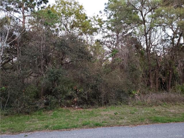 14 Geranium Court E, Homosassa, FL 34446 (MLS #781556) :: Plantation Realty Inc.