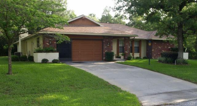 38 Hollyhock Court, Homosassa, FL 34446 (MLS #781562) :: Plantation Realty Inc.