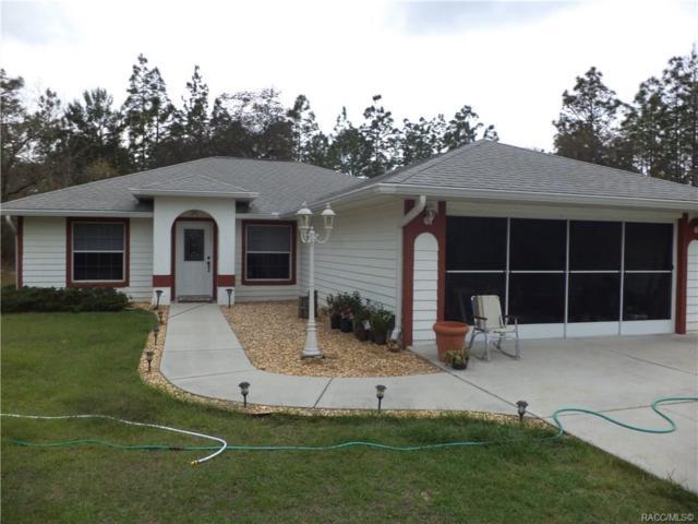 7590 N Flagler Terrace, Citrus Springs, FL 34433 (MLS #781575) :: Plantation Realty Inc.