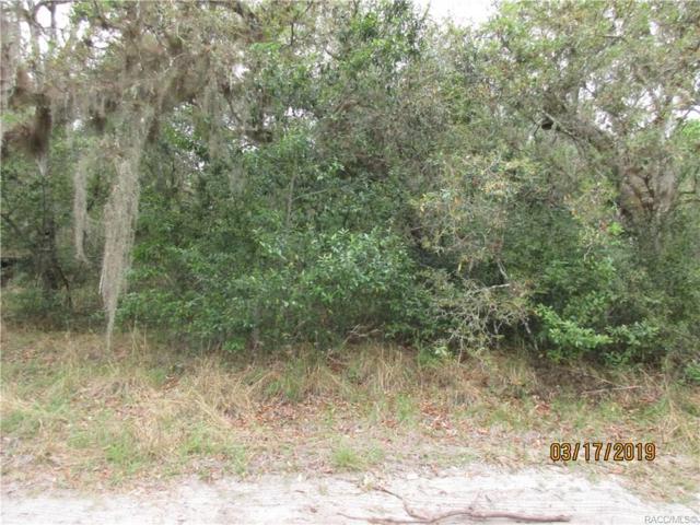 12845 E Big Buck Trail, Floral City, FL 34436 (MLS #781581) :: Plantation Realty Inc.