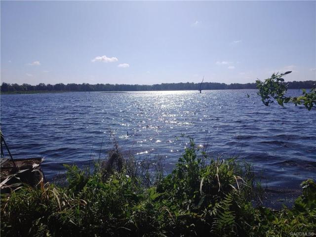 11590 SE 203rd Place, Inglis, FL 34449 (MLS #781583) :: Plantation Realty Inc.