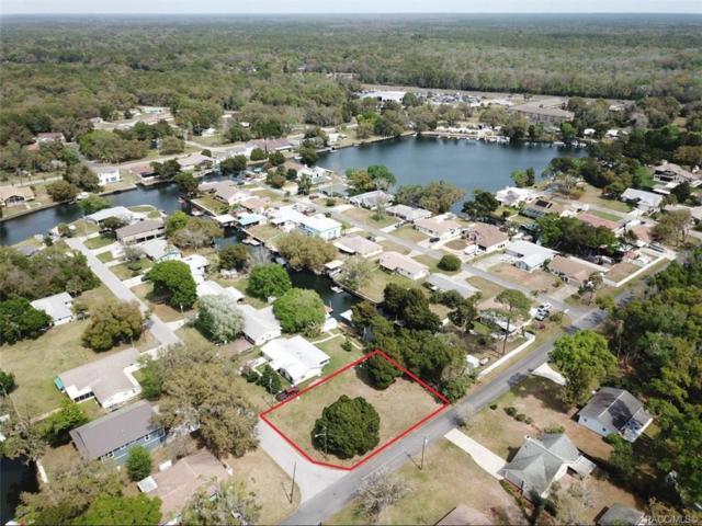 3821 N Nokomis Point, Crystal River, FL 34428 (MLS #781589) :: Plantation Realty Inc.