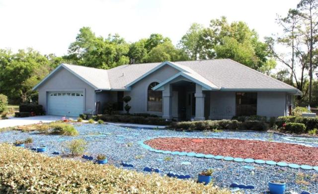9460 Weeks Drive, Brooksville, FL 34601 (MLS #781595) :: Plantation Realty Inc.