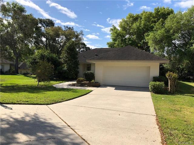 3292 W Wildwood Bay Court, Lecanto, FL 34461 (MLS #781617) :: Pristine Properties