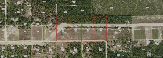5341 W Amman Street, Dunnellon, FL 34433 (MLS #781681) :: Plantation Realty Inc.