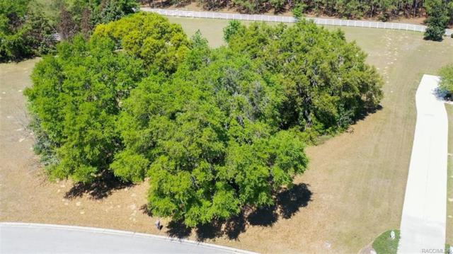 1475 E Seattle Slew Circle, Inverness, FL 34453 (MLS #781696) :: Plantation Realty Inc.