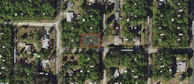 8454 N Pine Needle Terrace, Crystal River, FL 34428 (MLS #781757) :: Plantation Realty Inc.