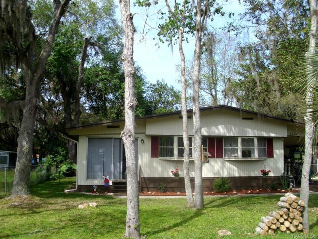 6000 Blue Bream Terrace, Hernando, FL 34442 (MLS #781761) :: Plantation Realty Inc.