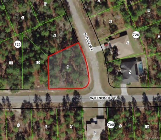 2139 W Kenmore Drive, Citrus Springs, FL 34434 (MLS #781777) :: Team 54