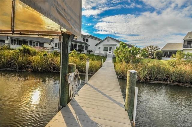 11180 W Cove Harbor Drive #123, Crystal River, FL 34428 (MLS #781792) :: Pristine Properties
