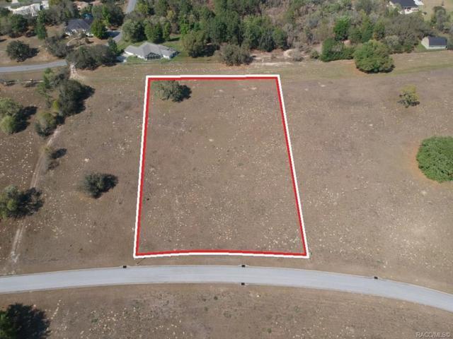 260 N Lake Shenandoah Loop, Inverness, FL 34453 (MLS #781804) :: Plantation Realty Inc.
