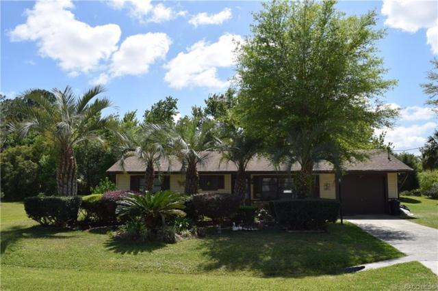 6822 W Doris Maretta Lane, Homosassa, FL 34446 (MLS #781830) :: Plantation Realty Inc.