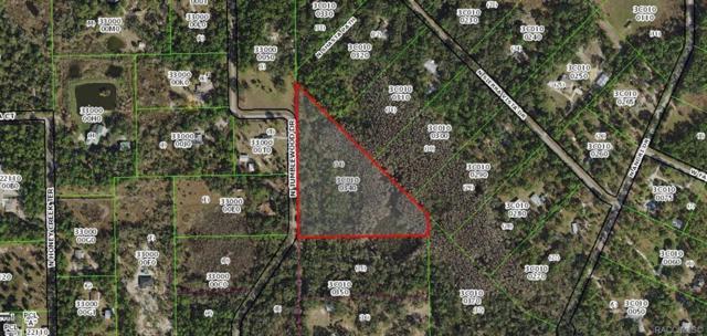 5175 N Tumblewood Drive, Crystal River, FL 34428 (MLS #781838) :: Plantation Realty Inc.